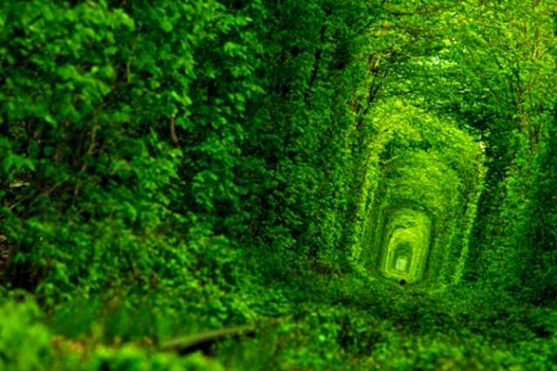 Тоннель любви в поселке Клевань