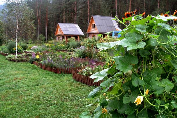 Ботанический сад, Алтайский край