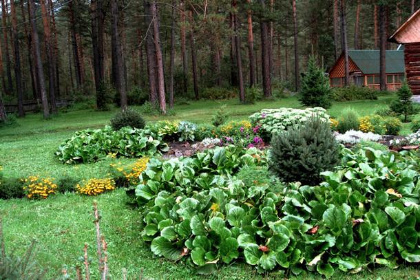Ботанический сад, Алтайский край, Россия