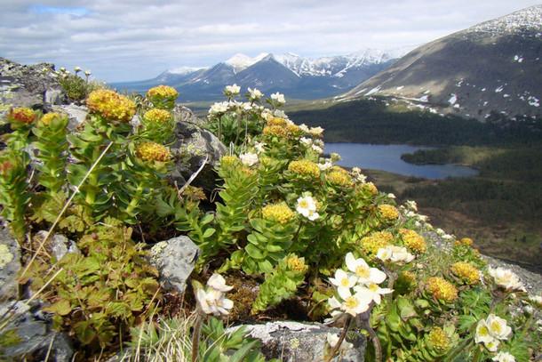 Национальный парк Югыд ва - светлая вода