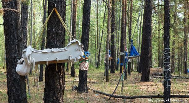 Мистический лес в Бурятии