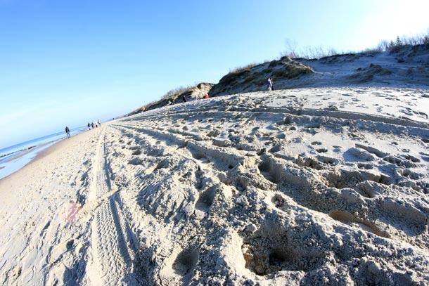 колеи от авто на песке